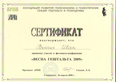 """Сертификат.  Конференция """"Весна гештальт 2009"""""""
